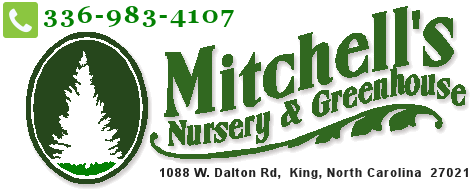 Mitchell's Nursery & Greenhouse